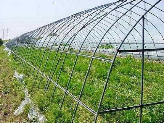 供应大棚温室 养殖大棚 大棚骨架设备