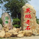 深圳市龍崗區英鵬園林奇石場