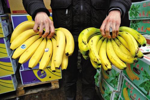 广州芭蕉进口报关|代理|清关|流程|手续|费用博隽