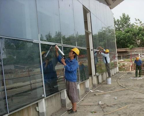 打玻璃胶_供应广东专业幕墙玻璃打胶更换玻璃胶