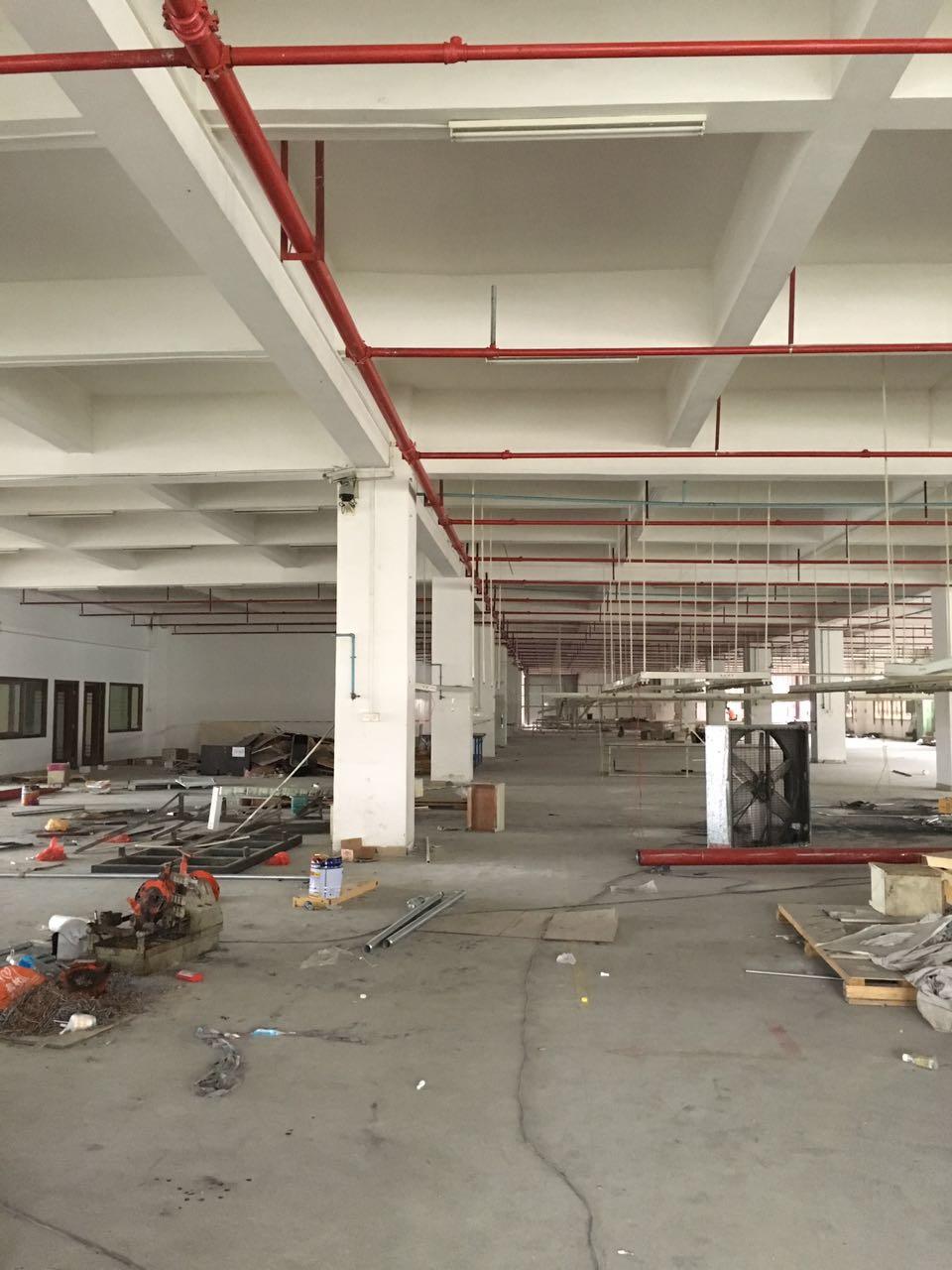 廠房設計裝修翻新修建改建石排石龍裝修公司
