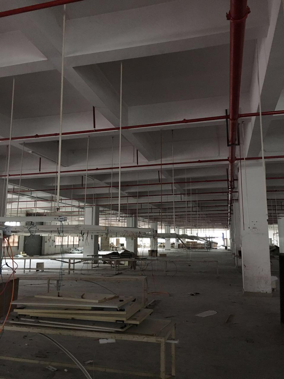黃江樟木頭廠房辦公室裝修翻新修建改建東莞恒鑫公司