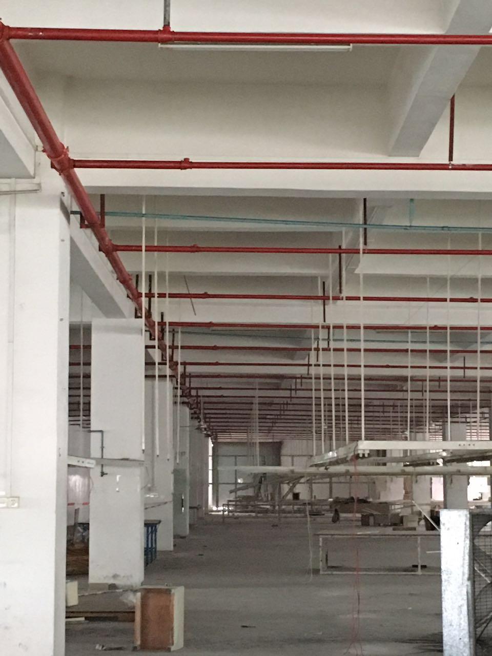廠房辦公室設計裝修寮步大朗東莞恒鑫公司改建修建翻新