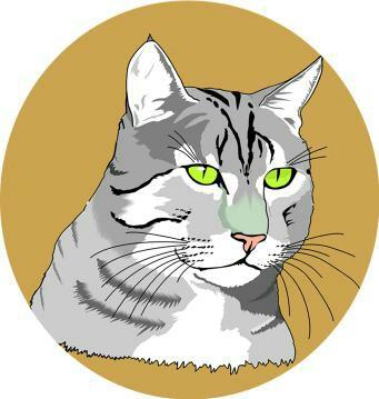 御貓清潔服務有限公司