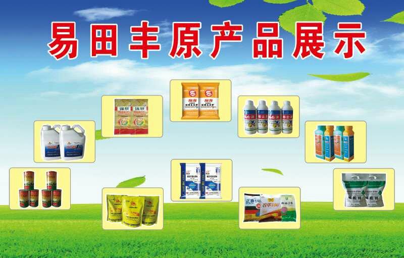 黑龙江大庆市优质玉米供应找哪家-大庆市优质玉米供应批发