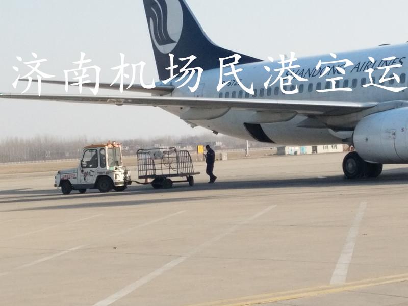 济南到郑州飞机