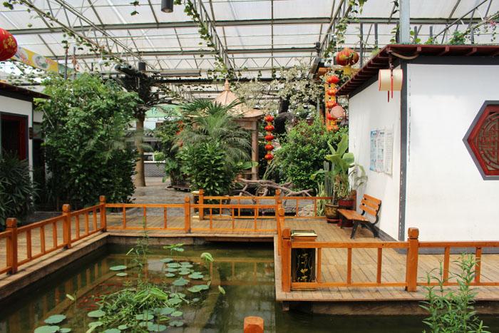 雄兰溪区美食哪儿的好?月霖生态园哪里安新美食节在图片