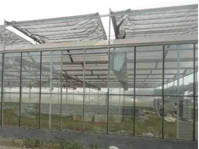 鸽子养殖大棚设计