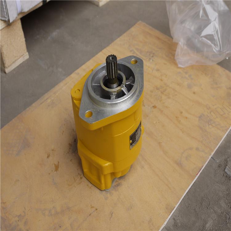 供应sd22变速泵705-21-32051厂家直销长治液压泵图片