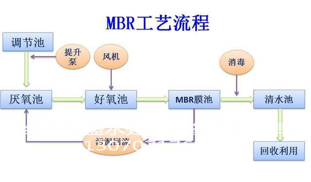 病原细菌结构图