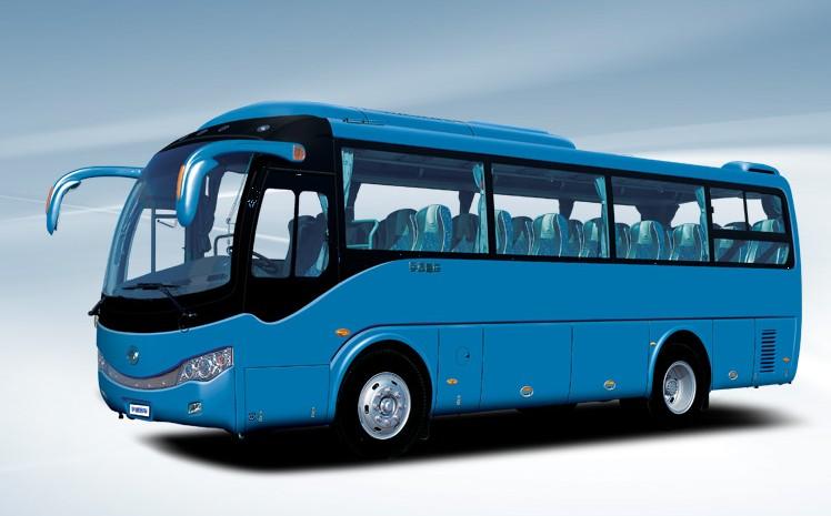 卧铺客车-青岛到乌海客车--票价多少