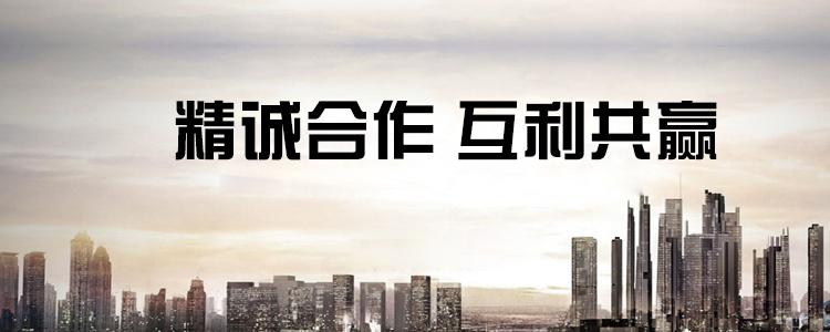 上海岱通鋁業有限公司