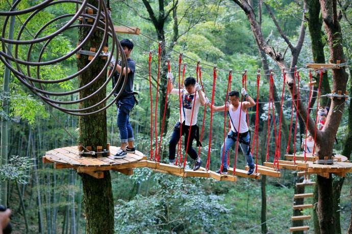 丛林穿越设计施工_森林探险拓展器材--名扬游乐图片