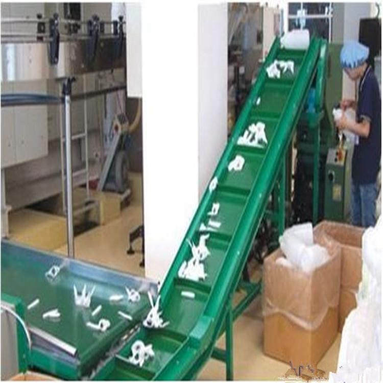 鹰潭绿色食品皮带机