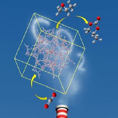 资阳高分子检测公司