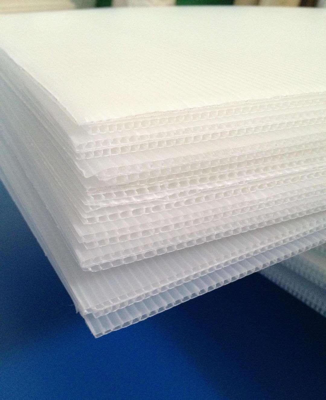 广东专业生产塑料隔板