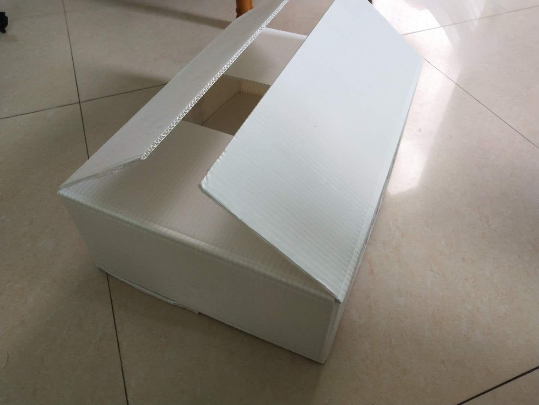 阳江钙塑箱生产