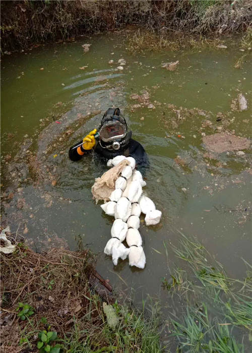 开封市水下堵漏当地潜水蛙人