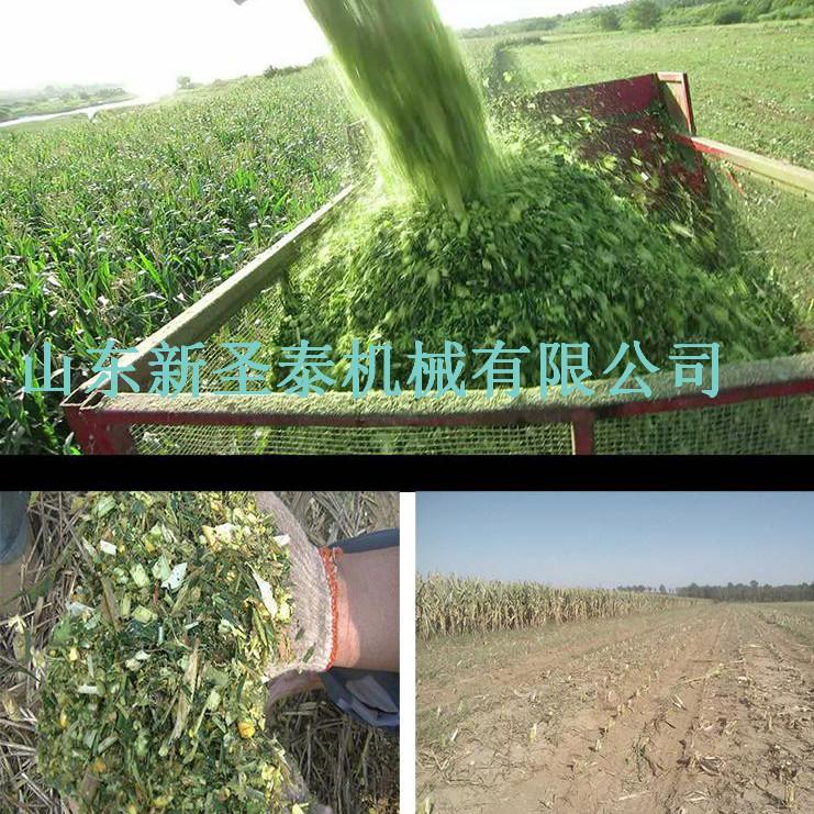 全株玉米青貯收割機 (4)