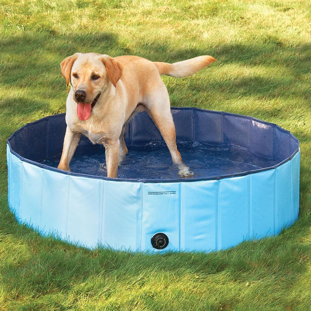 宠物洗澡池猫狗游泳池亚马逊爆款宠物水池