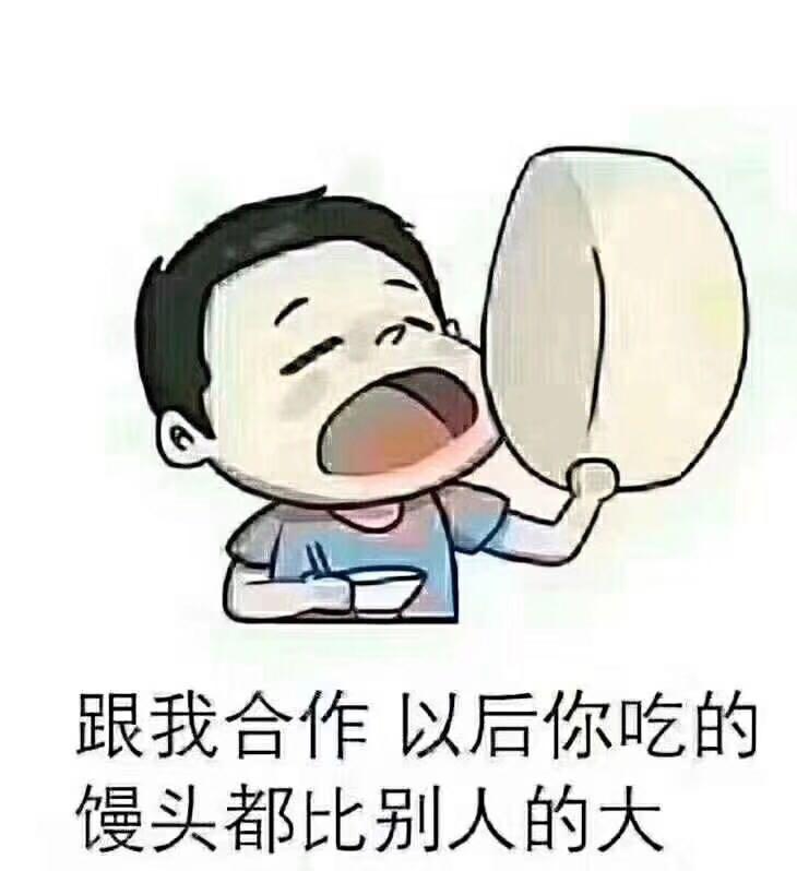 河北乐琪网络科技有限公司