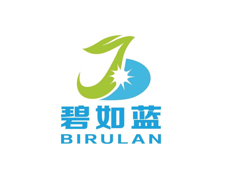 深圳市碧如藍環境技術有限公司