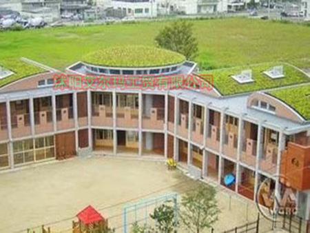 玉樹優質屋頂綠化