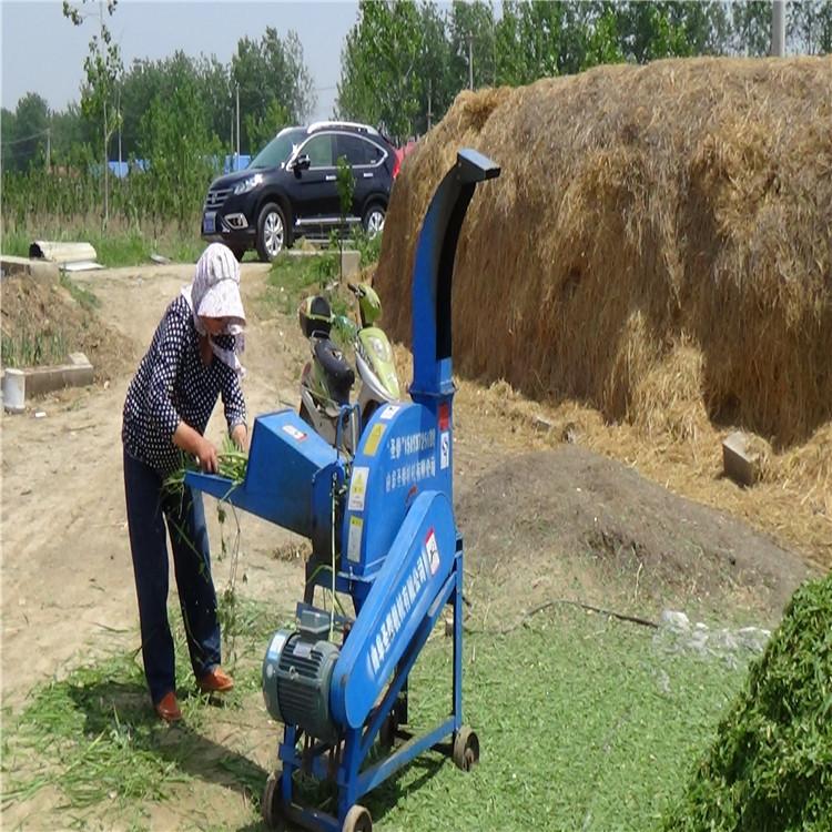玉米杆鍘草機 遼寧青儲飼料粉碎切草機價格