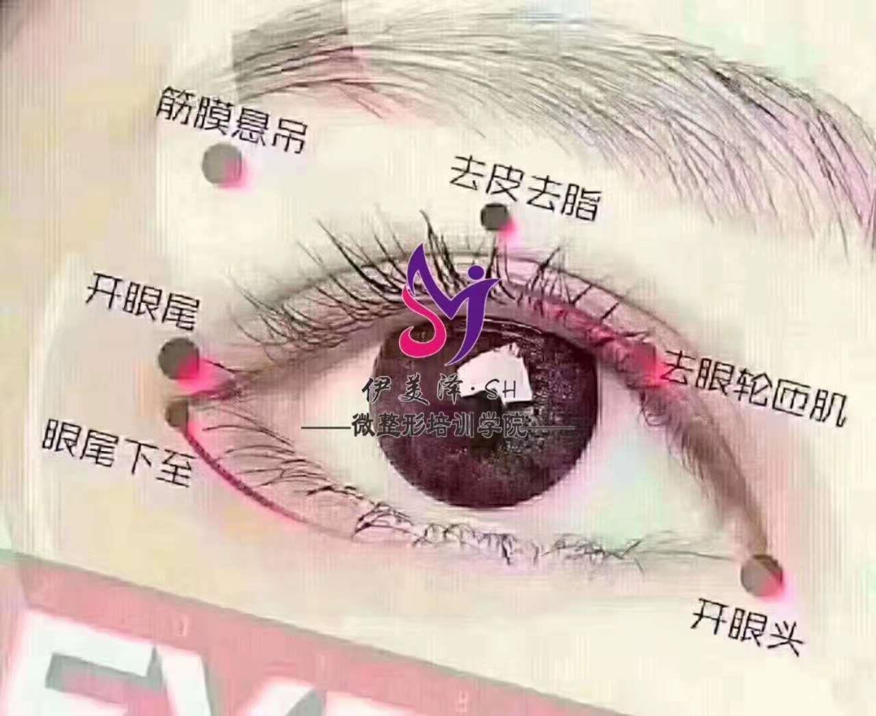 邢台零基础微整形双眼皮课程学习项目