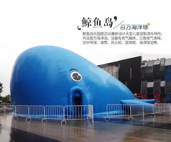 黄石专业鲸鱼岛租赁
