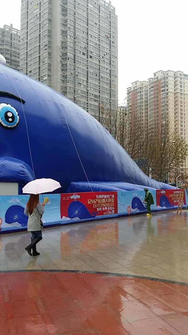 芜湖鲸鱼岛租赁价格