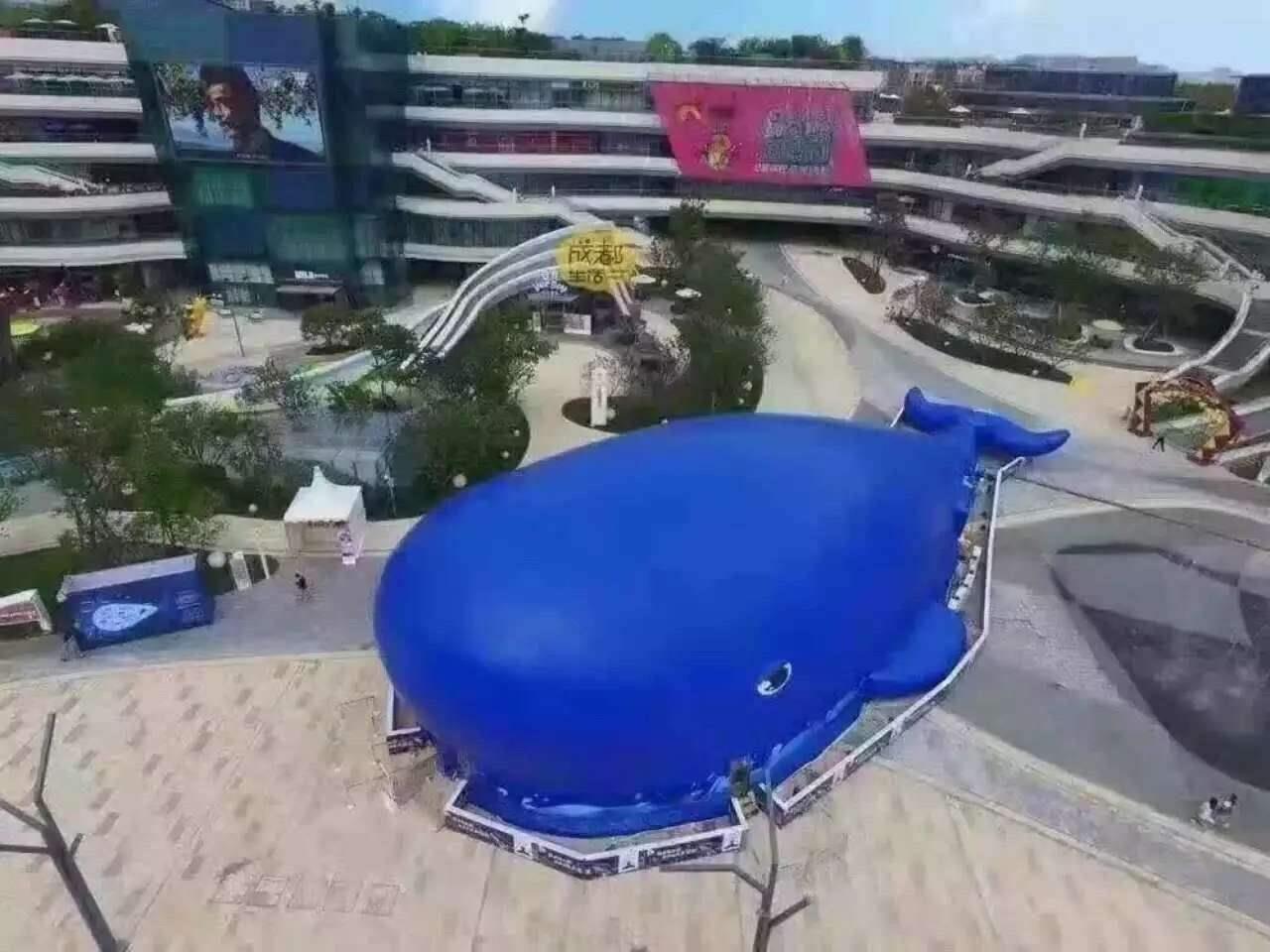 淮南专业鲸鱼岛租赁