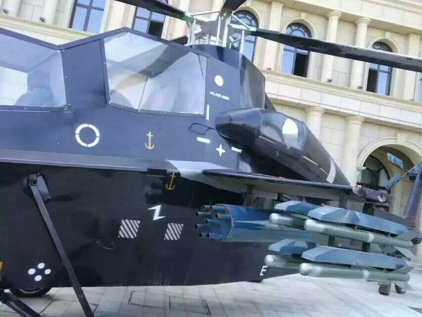 阿勒泰军事模型2019