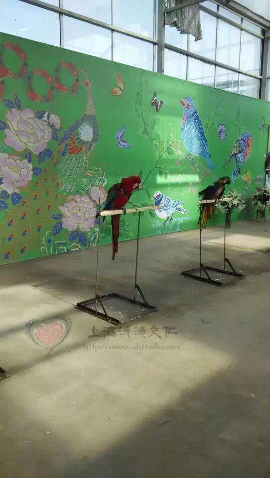 海南百鸟展暖场必备项目