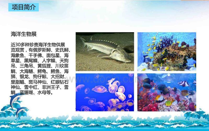 黔南海洋展动物租赁