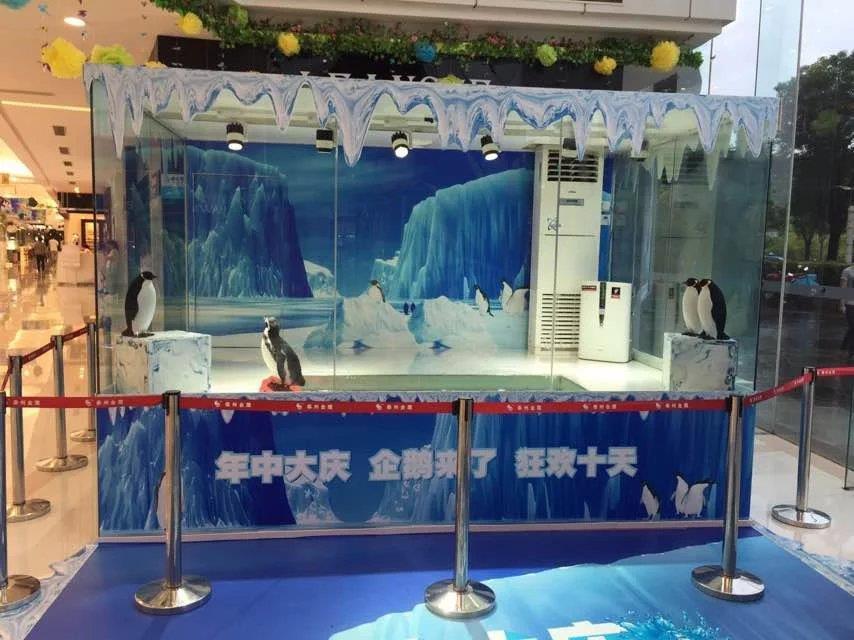 丽江海洋展租赁行情