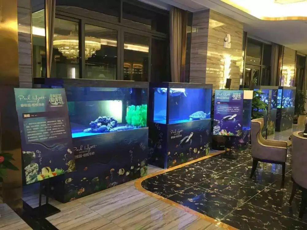 嘉峪关海洋展提供一站式服务