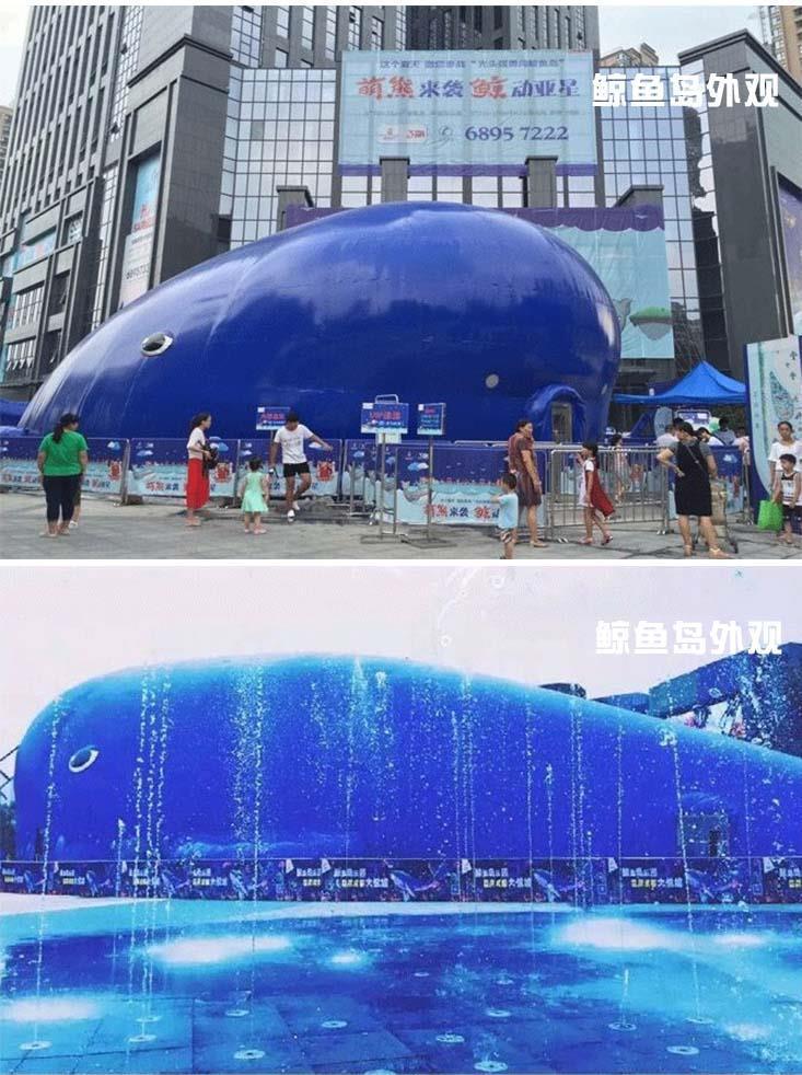 六盘水透明鲸鱼岛乐园出租优质服务