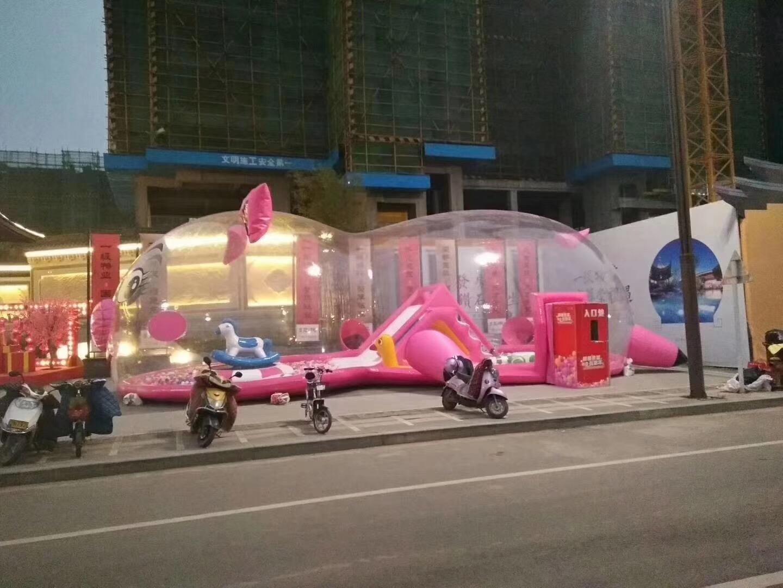 泰州粉萌萌猪猪乐园活动方案
