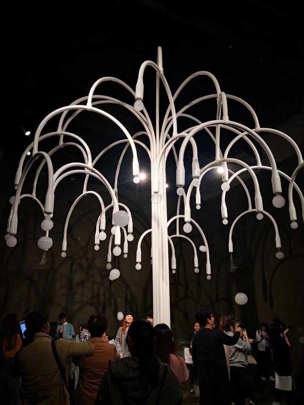 上海烟泡树出租价格
