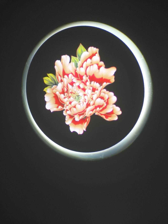 北京20W高清動態投影燈