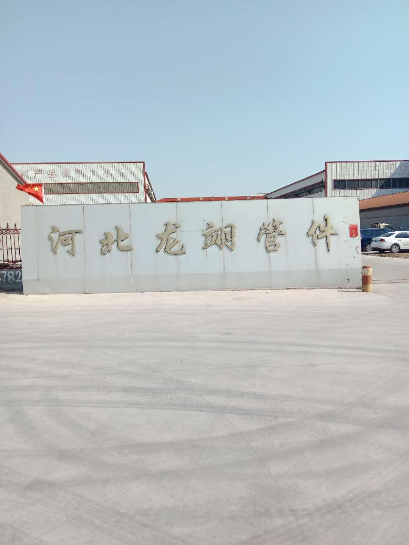 河北龍翊管件制造有限公司