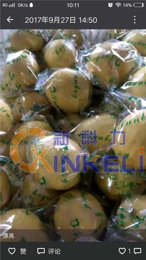 桂林柠檬包装机定做