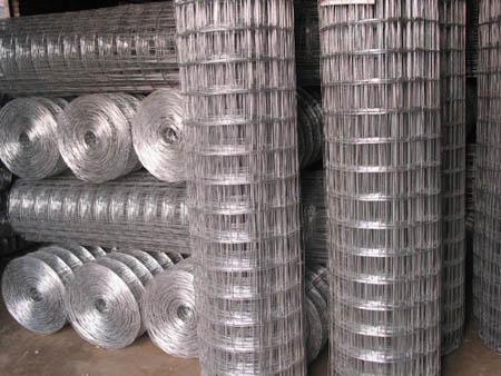 郑州钢丝网价格