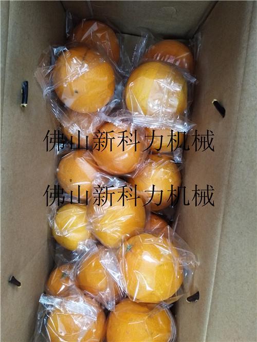 深圳销售脐橙包装机