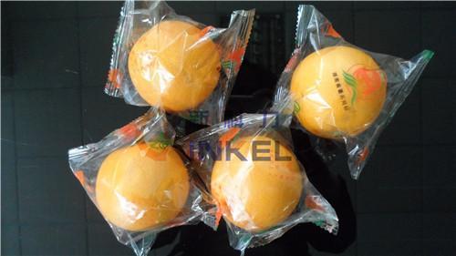 衡阳新款冰糖橙包装机