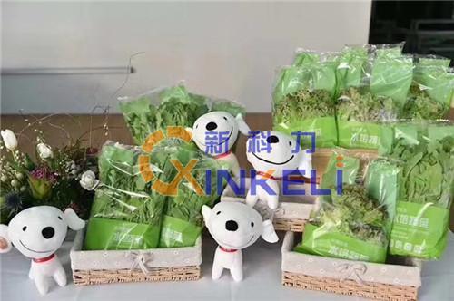 东莞供应蔬菜包装机