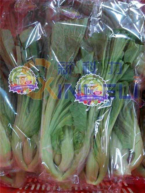 保定蔬菜包装机生产