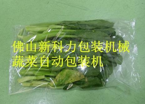 潍坊进口蔬菜包装机