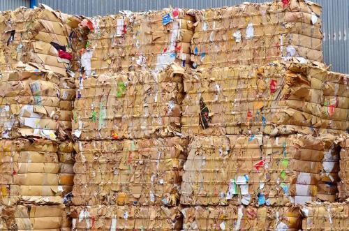 越秀区废纸回收价格